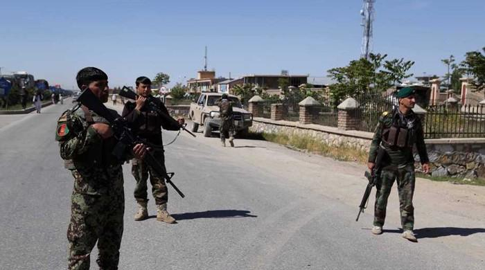 Taliban killed at least 291 Afghan security personnel in past week: govt
