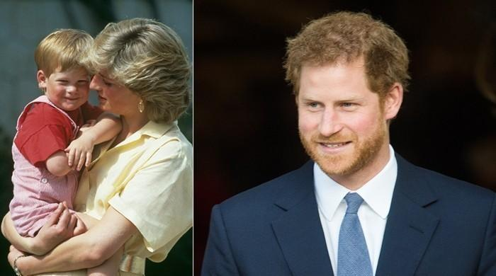 How Princess Diana foresaw Prince Harry's future and his capacity to 'address something'