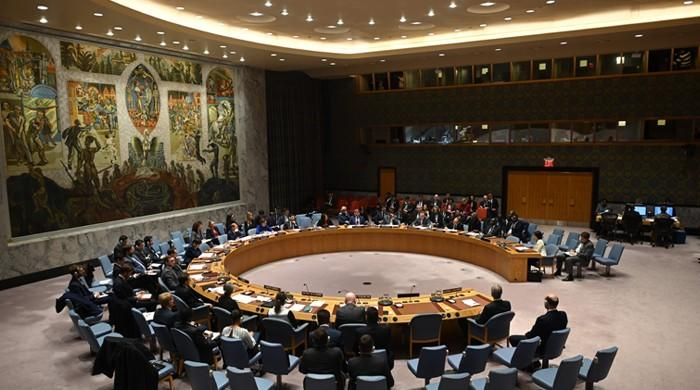 UNSC decision calling for pandemic-related halt to conflicts