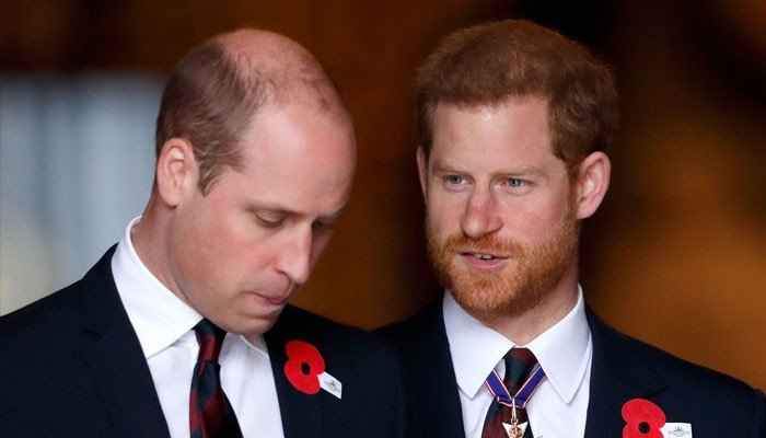 Prince Harry, Prince William could by no means mend ties ever once more: report