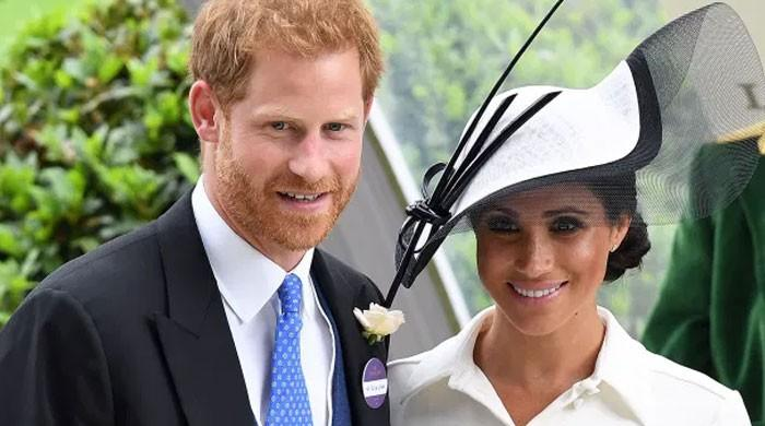 Prince Harry, Meghan Markle bashed with accusations: 'You crossed the line here!'