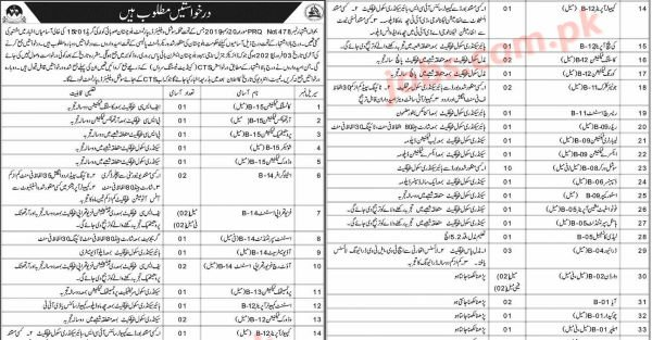 Social Welfare Department Balochistan Jobs 2021 for 60+ Stenographers, Jr Clerks, Social Workers, Computer Operators, Medical and Support Staff – Pakistan Jobs