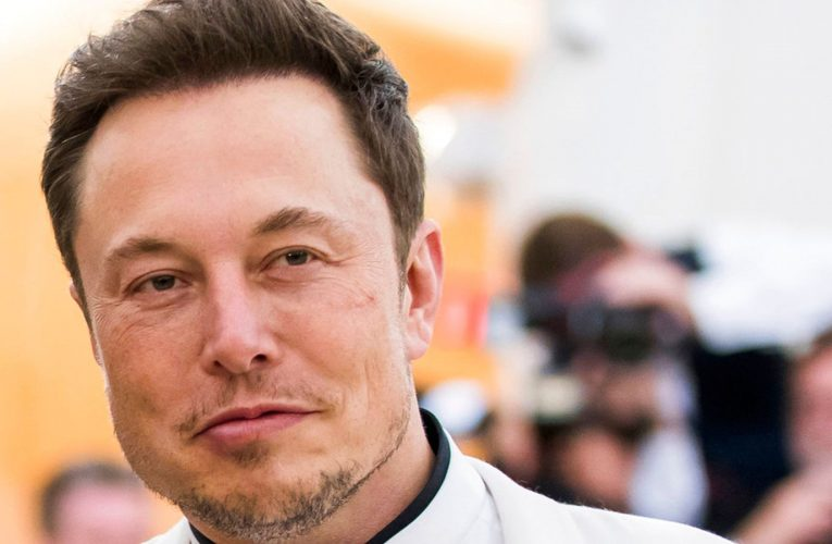 Elon Musk says he has wired up a monkey's mind to play video video games with its thoughts
