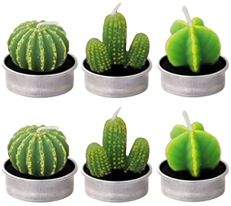 Candles, Cactus Candles, Decorative Candles, Vococal- 6 PCS Handmade Delicate Tealight Smokeless Cute Green Plant Candle for Birthday Wedding Party Home Decor Candle (Picture Styles)