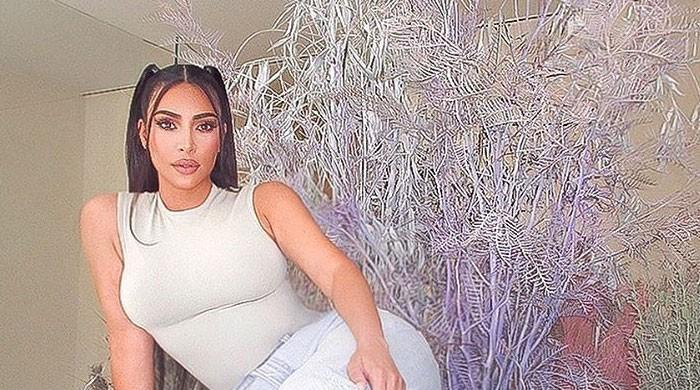 Kim Kardashian treats fans with stunning pictures with her 'boo' after filing for divorce