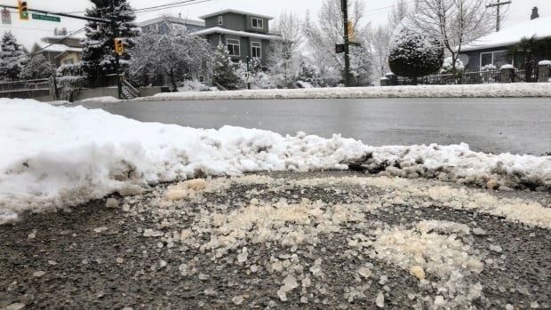 Road salt levels in some local creeks toxic to aquatic life, says riverkeeper | CBC News