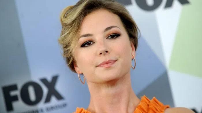 Emily VanCamp reprises her role as Sharon Carter as it needs no love interest