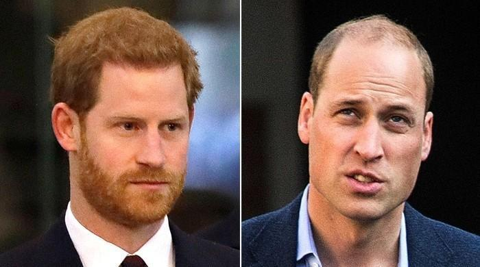 Prince William asked to walk apart from Harry before they reconciled