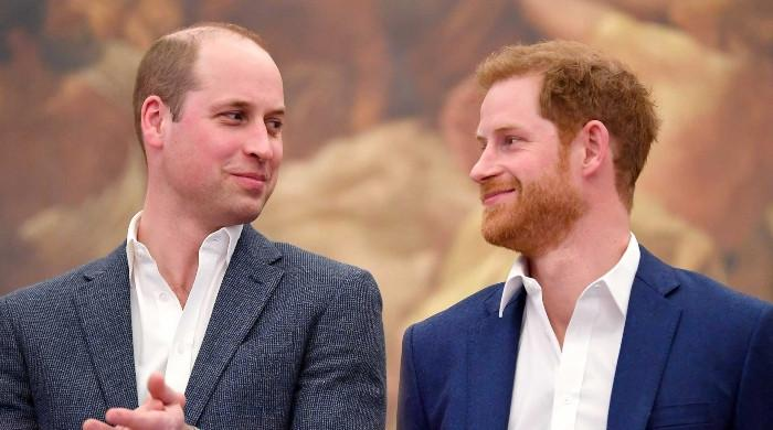 Royal historian spills the beans on Harry and William's public reunion