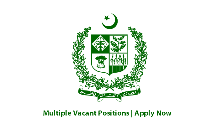 Federal Government Organization Jobs Renewable Energy (RE) Officer