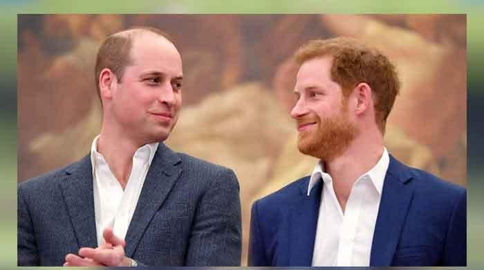 Prince William and Harry once made heart-melting promise to Princess Diana, claims royal historian