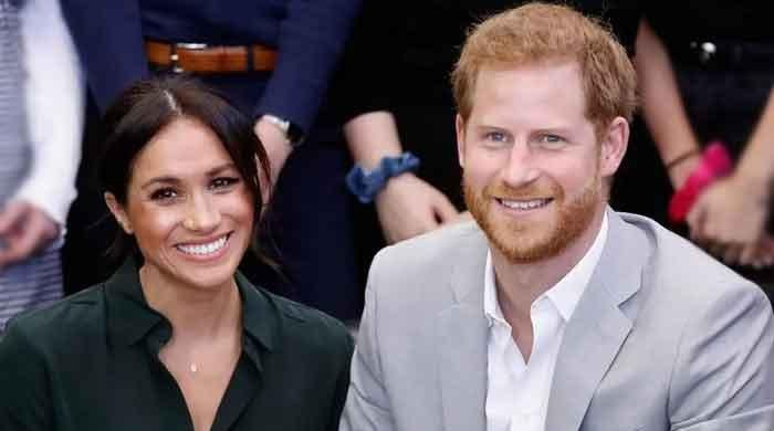 Meghan Markle to promote 'her own political ambitions' by following in footsteps of Arnold
