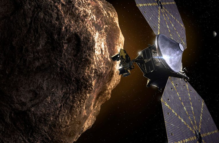 Lucy mission: NASA launches first probe to asteroid 'swarm' with aim of exploring origins of solar system